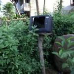 Tận dụng tivi cũ làm… bàn thờ