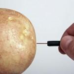 Làm anten khoai tây giúp tín hiệu tivi mạnh hơn gấp đôi